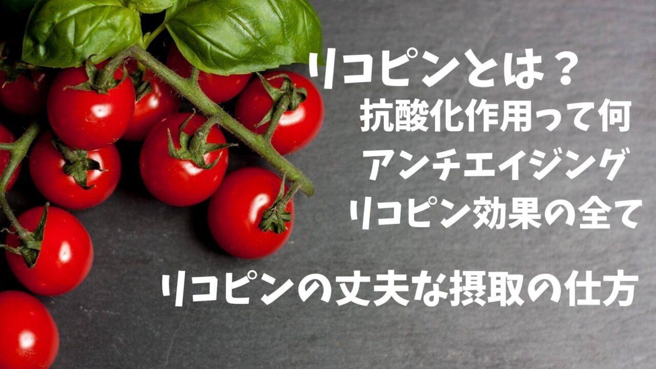 トマト栄養素